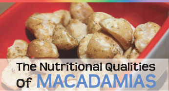The Nutritional Qualities of MACADAMIAS